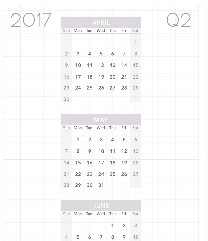 2017 Planner and Calendar from My Wellness Journal